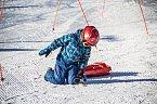 Bobová či sáňková dráha je oddělena od lyžařské části